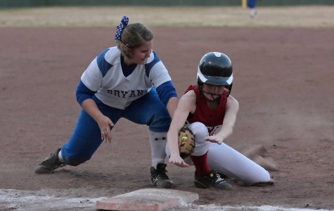 Gallery: Lady Hornets defeat Lady Badgers