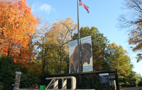 Behind the glass: Zookeepers make a difference