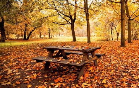 10 Cheap, Unforgettable Fall Dates