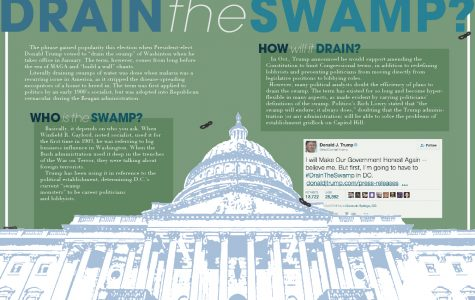 What does it mean to drain the swamp?