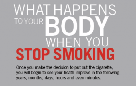 What Happens to Your Body When You Stop Smoking Infographic