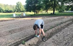 Colbe's Crops: Sophomore Grows Crops for Charity