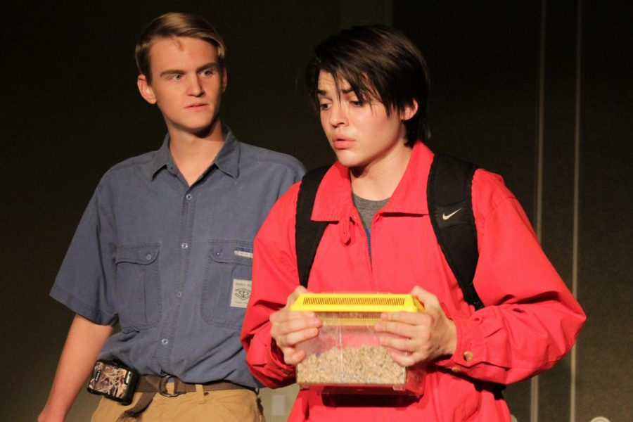 Senior Elijah Glidwell holds a cage for a rat as he plays Christopher Boone.