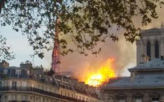 Cathedral at Notre Dame Burns